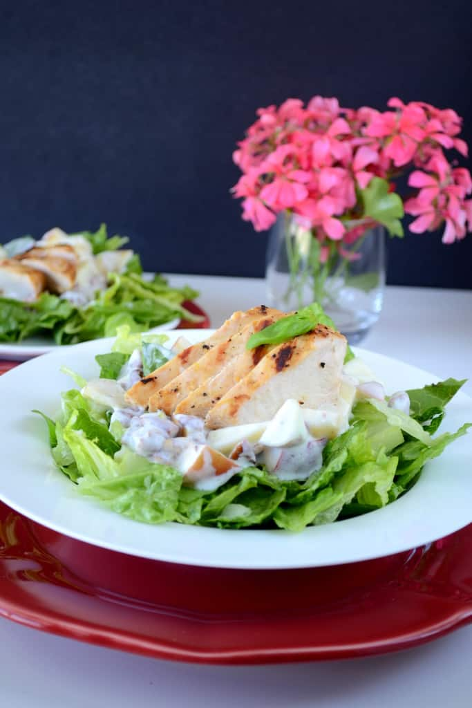 Apple and Pecan Salad with Greek Yogurt and Orange Ginger Grilled Chicken