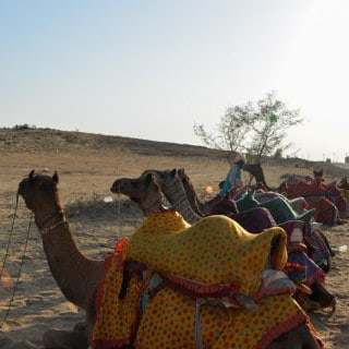 Jaisalmer – Part 3