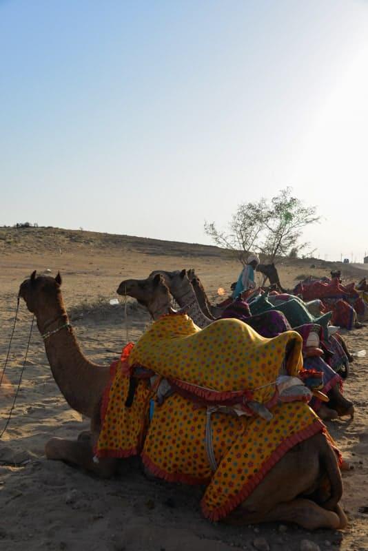 Jaisalmer – Part 3