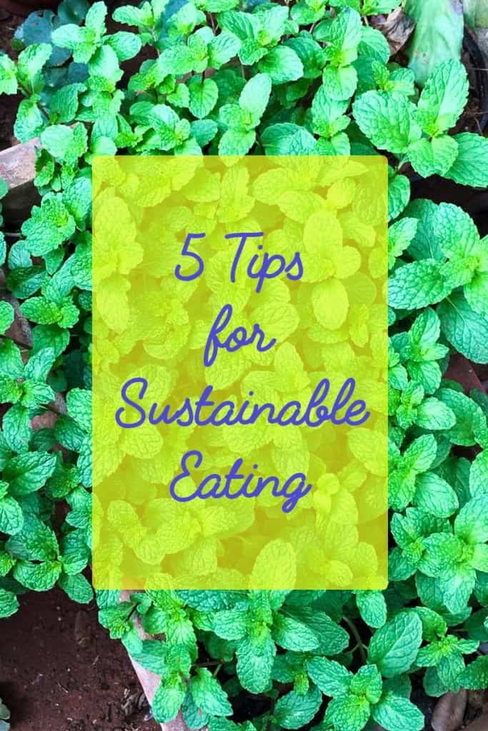 5 Tips for Sustainable Eating | Healthy and Sustainable Food