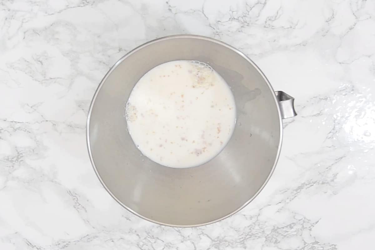 Yeast, sugar, milk, and water mixed in a bowl.