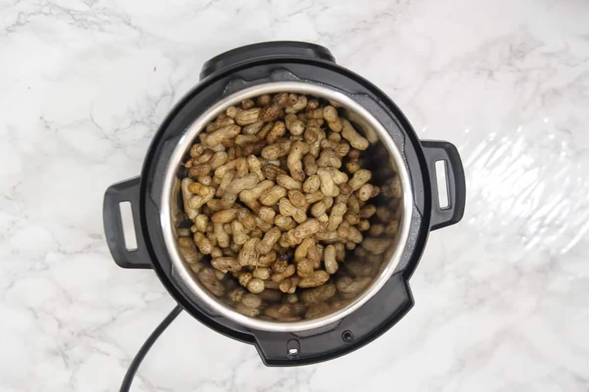 Cleaned peanuts added in Instant pot.