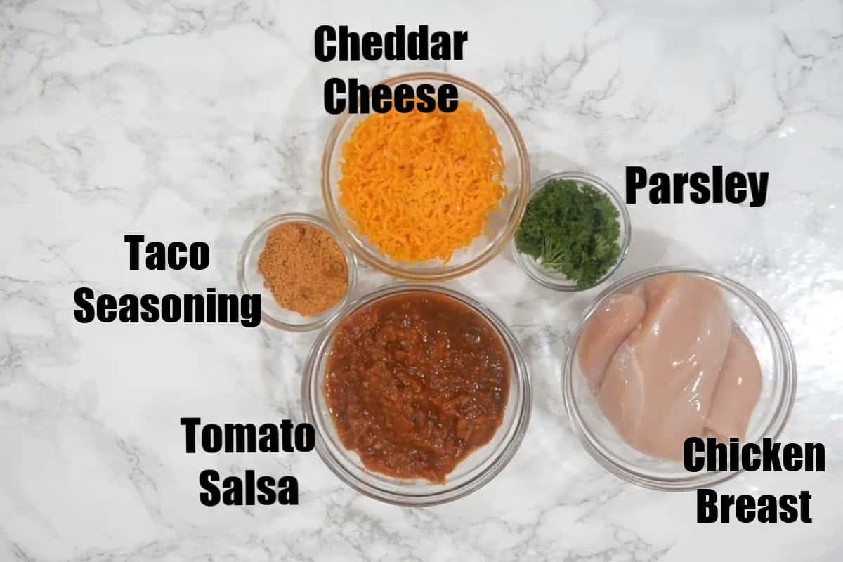 Salsa Chicken Ingredients.