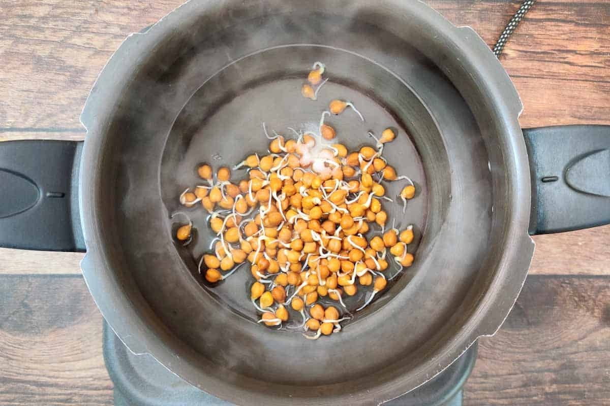 Sprouted chickpeas aded to a pressure cooker.